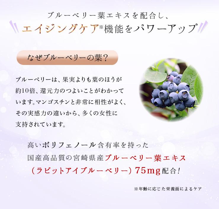 AGEsマンゴスチン+ブルーベリー葉イメージ03